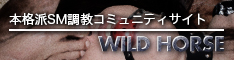 <b>Wild_Horse</b>~ハード調教可~