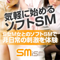 ソフトSM
